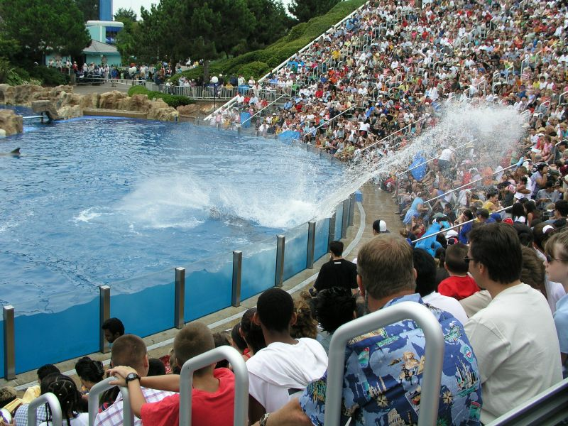 Gettin' Soaked in Sea World